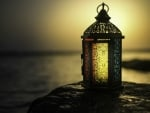 Beautiful Lantern ♥