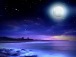 ~*~ Magic Night ~*~