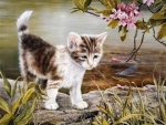 Lovely Kitten