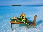 Sumptuous meal in the sea!