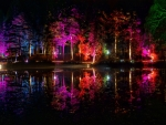 Park at night 1
