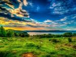Green land 2291436