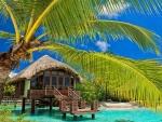 """Home, Sweet Paradise Home!"""