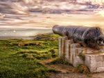 *Old cannon*