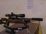Custom HW100 Carbine