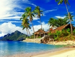 Tropical scenery