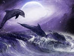 Moonlit Dolphins