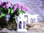Beautiful lilac With ♥