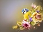 Cute little birdie