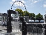Water and Wheel Seattle