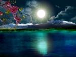 ~*~ Beautiful Night ~*~