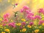 Hummingbirds & Wildflowers