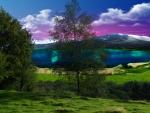 ~*~ Landscape ~*~