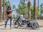 2006-Harley-Davidson-Springer-Softail