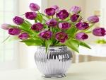 Pine Tulips Bouquet in Vase