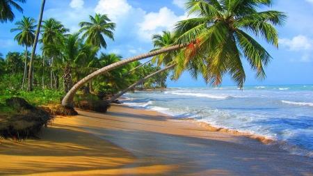 Wonderful Beach - Beaches & Nature Background Wallpapers ... - photo#11