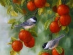 Autumn Chickadees & Apples
