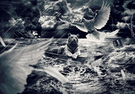 Fantasy with tiger and doves - cloud, ocean, black, tiger, waves, storm, animal, sea, boat, ship, bird, bw, dove, white