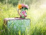 Summer Flowers ♥
