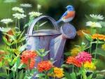 Flowers Watering