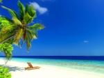 Caribbean rest