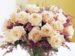 A warm bouquet of roses
