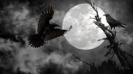 Raven's Moon by MaDonna - sky, clouds, dead tree, fog, mist, ravens, goth, gothic, full moon, dark