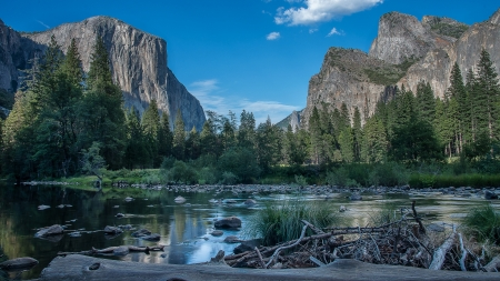 Good Afternoon! - Yosemite, forest, photography, California, national park, Pentax, river, sky
