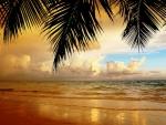 gorgeous beach at sundown