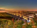long marsh pier at sunset hdr