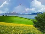 ~*~ Beautiful View ~*~