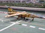 Mig-23 'Flogger'