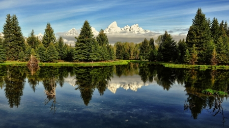 Clean Crystal Waters of the Lake - mountains, clean, nature, crystal, reflection, trees, lake, landscape