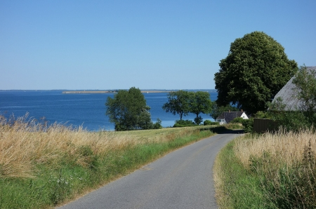 Summer day - summer, tree, road, view