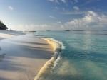 Morning at the Beach