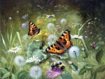 Butterflies on Dandelions