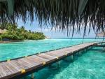 The Ocean Resort