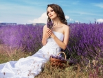 Lavender Field Beauty