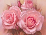 pink roses paint