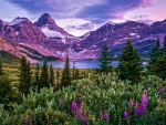 Lake Magog, British Columbia, Canada