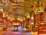 gorgeous library hdr