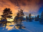 Sunset in the Snowy Mountains