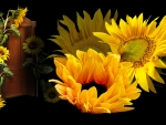 Power of Sunflowers by MaDonna