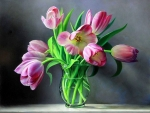 ✿⊱•╮Tulips from Holland╭•⊰✿