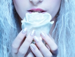 Frozen Fairy with Rose