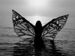 Butterfly Girl ♥