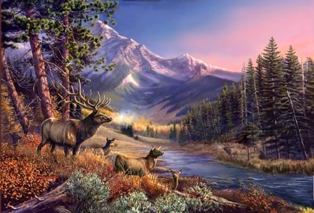 Elk River - draw and paint, elks, love four seasons, attractions in dreams, deer, paintings, mountains, summer, nature, forests, animals, rivers