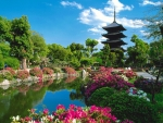 spring in China with  flowers and temple