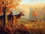 Deer in the Wind