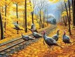 Turkeys Crossing the Tracks